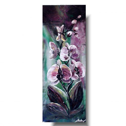 Obrazkwiaty orchidea