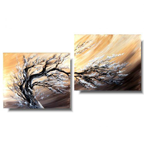 obrazy drzewa